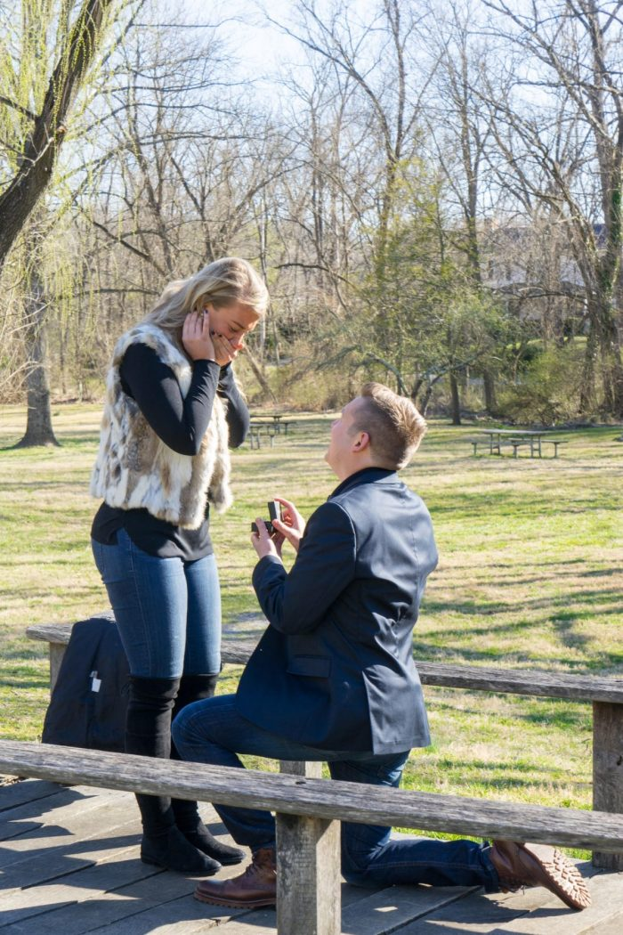 Engagement Proposal Ideas in Millwood, VA