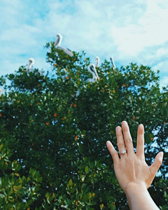 Engagement Proposal Ideas in Islamorada,