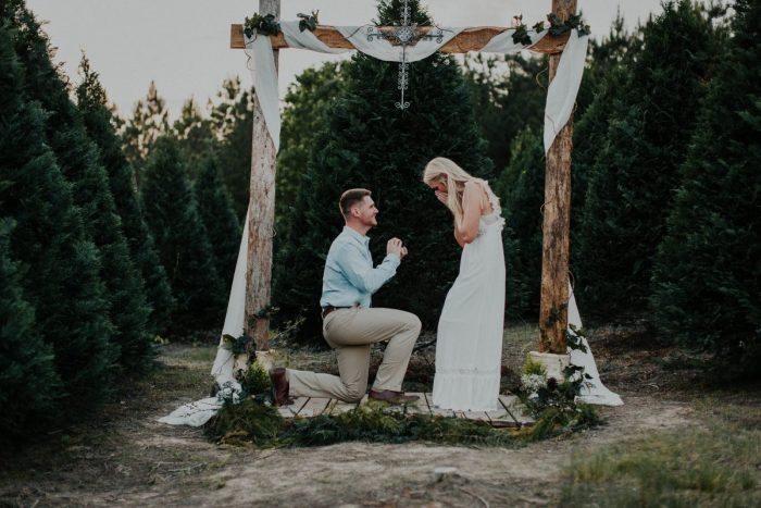 Marriage Proposal Ideas in In a Christmas tree farm