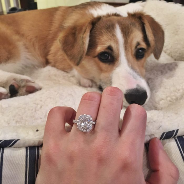 Where to Propose in West Chester, PA