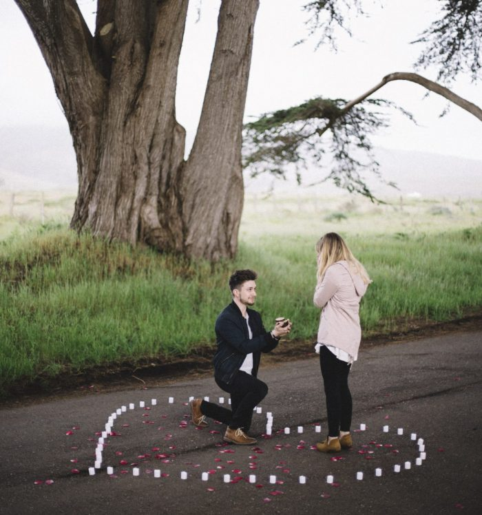 Wedding Proposal Ideas in Cypress Tree Tunnel
