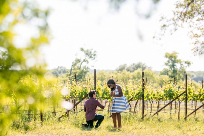 Fallon's Proposal in William Chris Vineyards