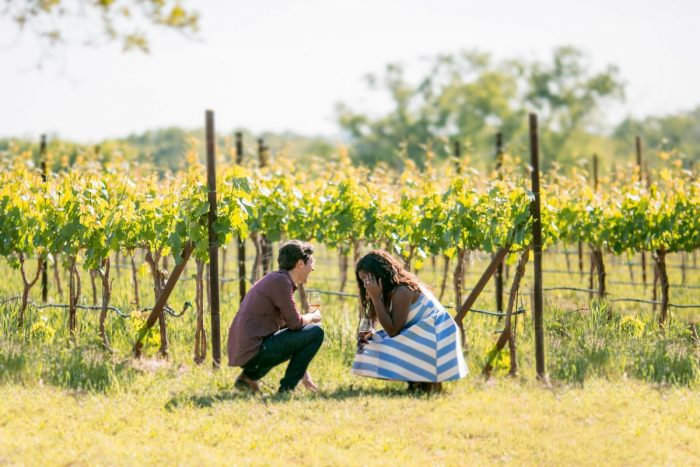 Engagement Proposal Ideas in William Chris Vineyards