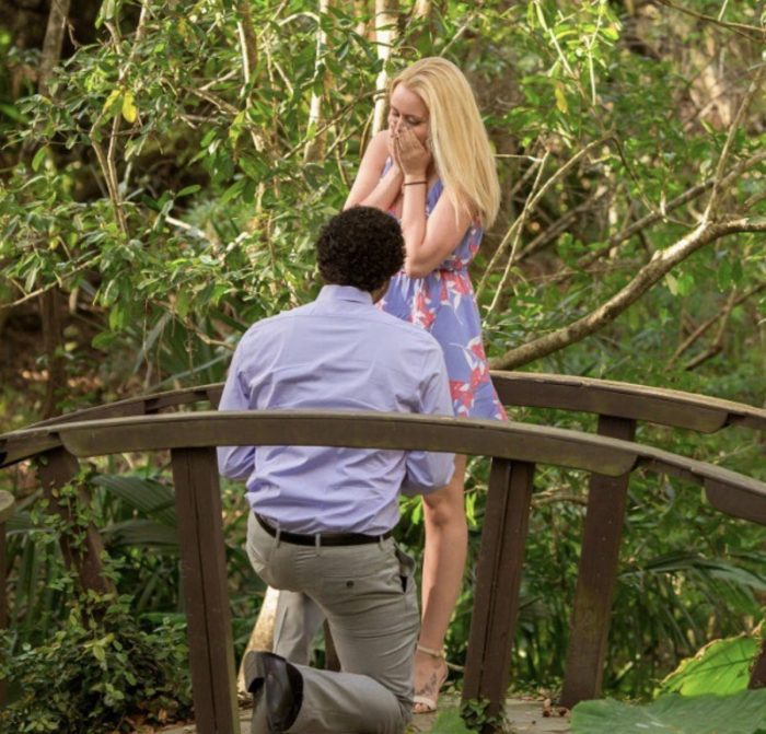 Proposal Ideas Kanapaha Botanical Gardens