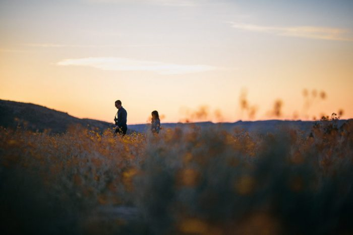 Engagement Proposal Ideas in Anza-Borrego Desert State Park