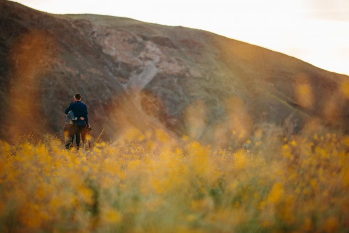 Sandra and Daniel's Engagement in Anza-Borrego Desert State Park