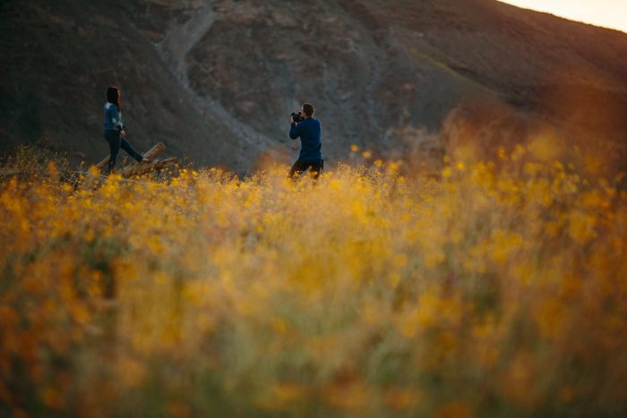 Marriage Proposal Ideas in Anza-Borrego Desert State Park