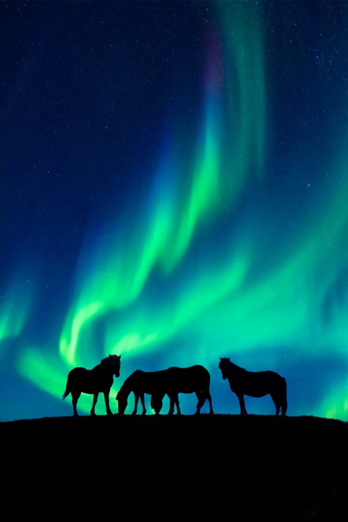 Image 5 of Photographer Captures His Own Northern Lights Proposal – and The Photo is Insane.