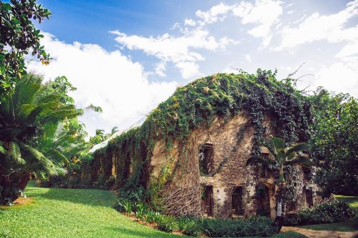 Caitlyn's Proposal in Haiku Mill, Maui, Hawaii