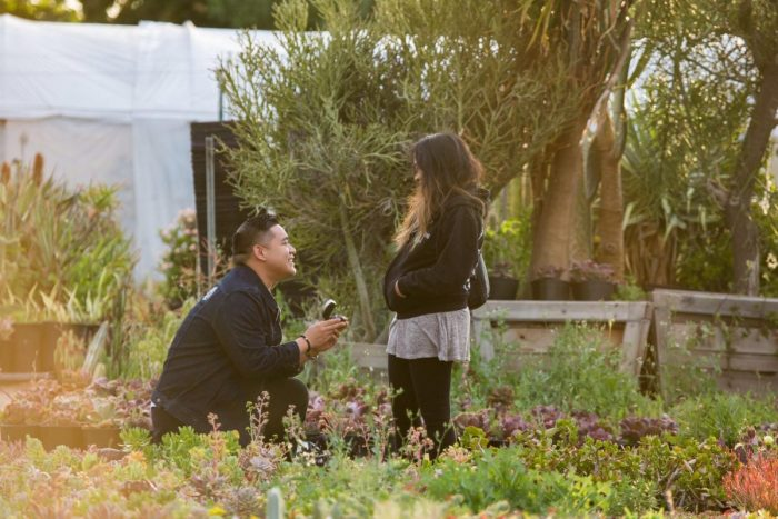 Where to Propose in California Cactus Ranch