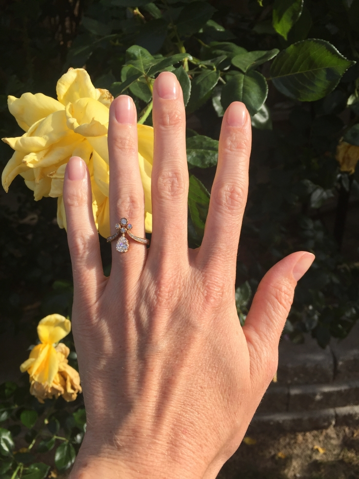 Wedding Proposal Ideas in In our house with our two dogs in Bakersfield Ca