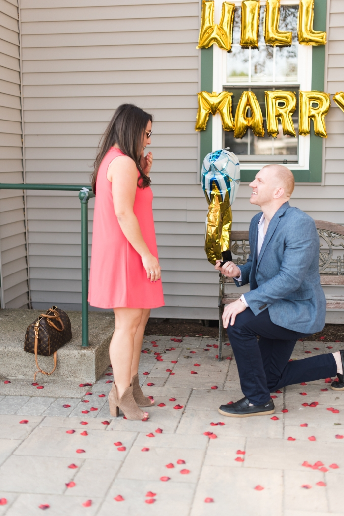 Marriage Proposal Ideas in Karen Stives Equestrian Center at Dana Hall School in Wellesley, MA