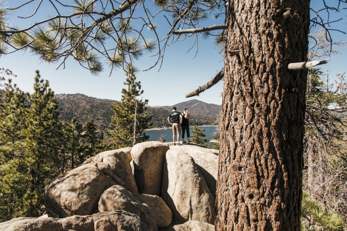 Amy and Andrew's Engagement in Big Bear Lake, California