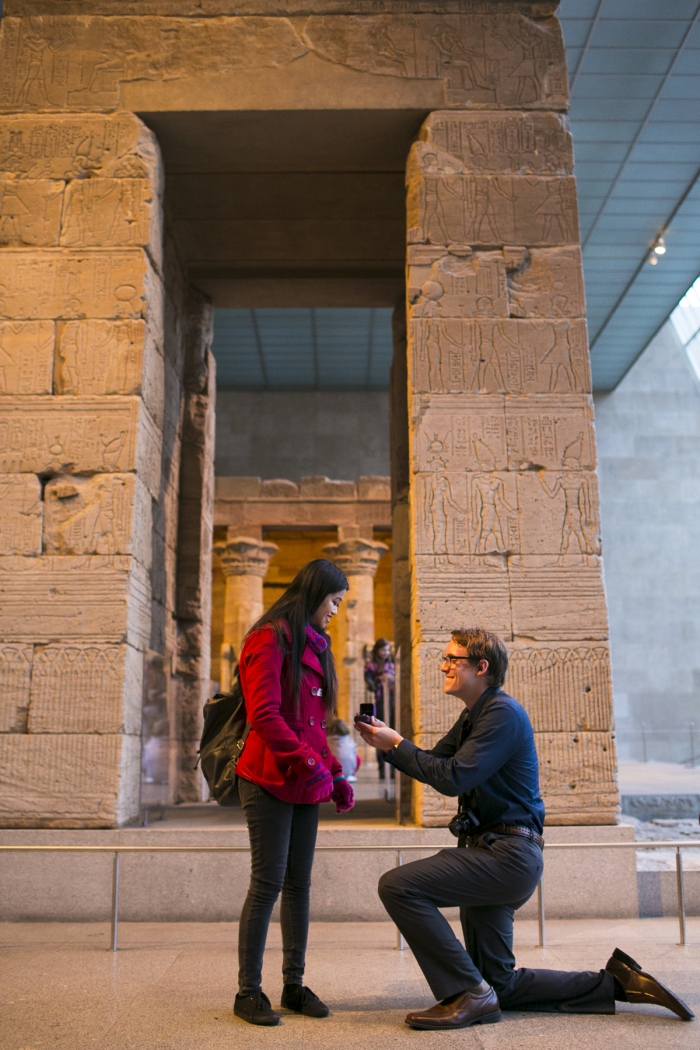 Proposal Ideas Metropolitan Museum Of Art