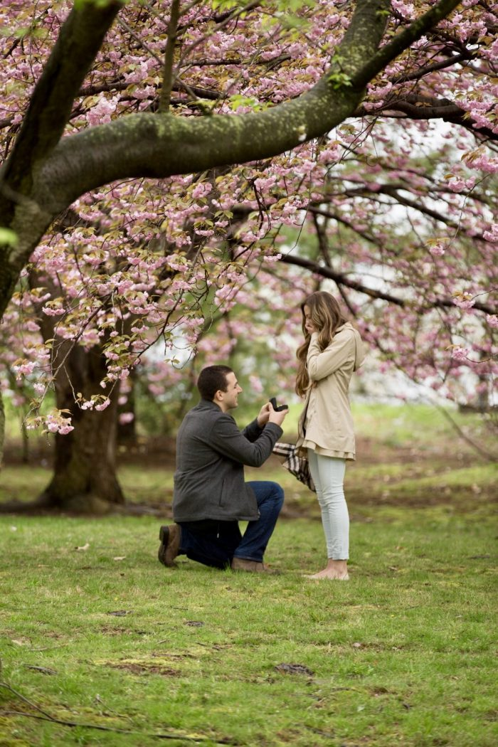 Where to Propose in Branch Brook Park, Newark, NJ