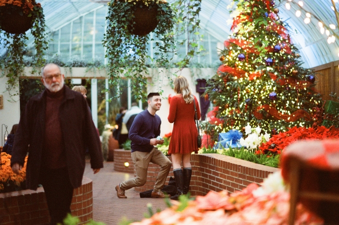 Where to Propose in Phipps Conservatory
