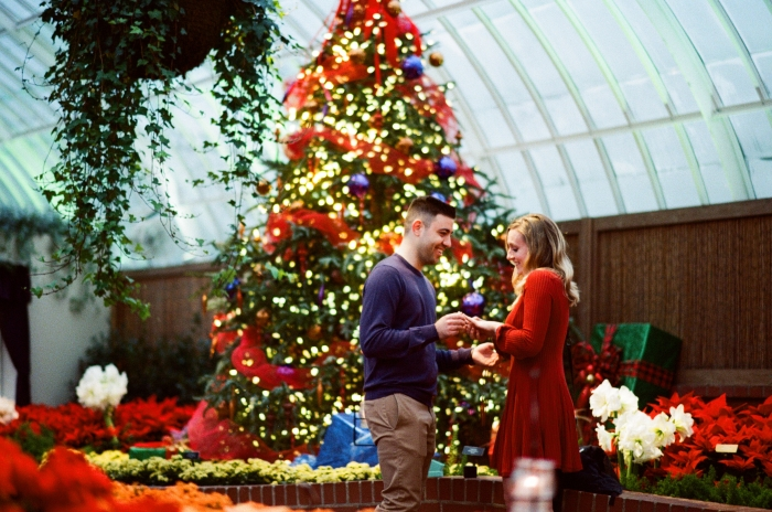Sarah's Proposal in Phipps Conservatory