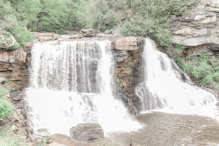 Engagement Proposal Ideas in Black Water Falls State Park in West Virginia