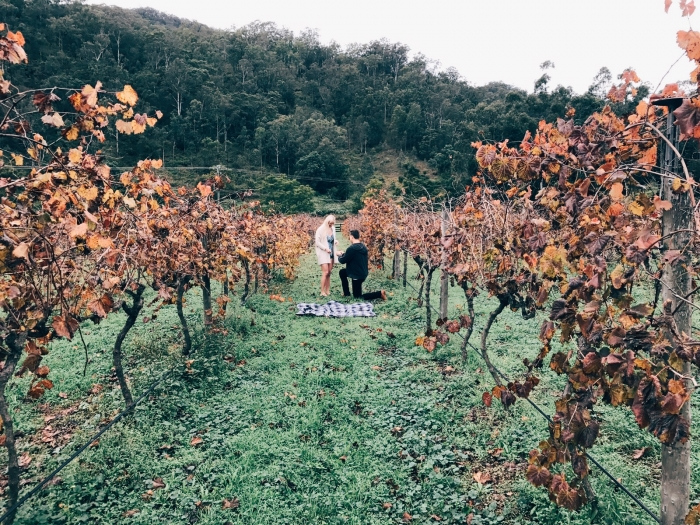 Engagement Proposal Ideas in O'Reilly's Canungra Valley Vineyards