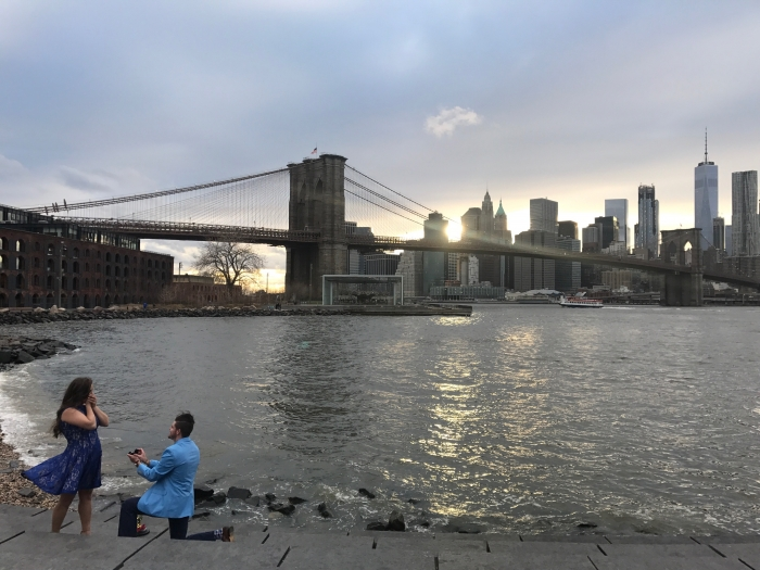 Wedding Proposal Ideas in New York City