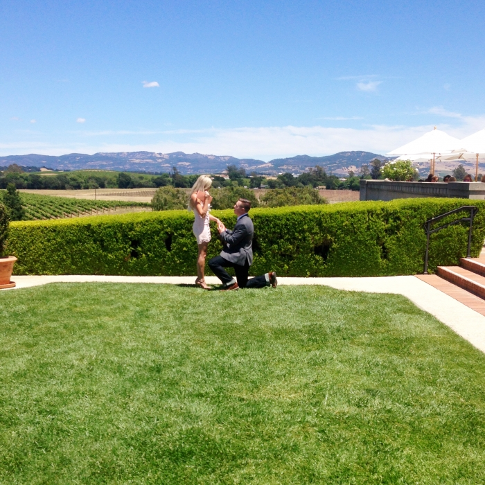 Where to Propose in Domaine Carneros Winery, Napa, CA
