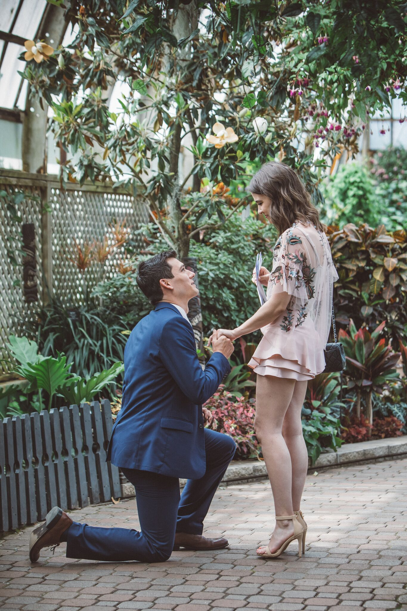 Engagement Proposal Ideas in The Lincoln Park Conservatory