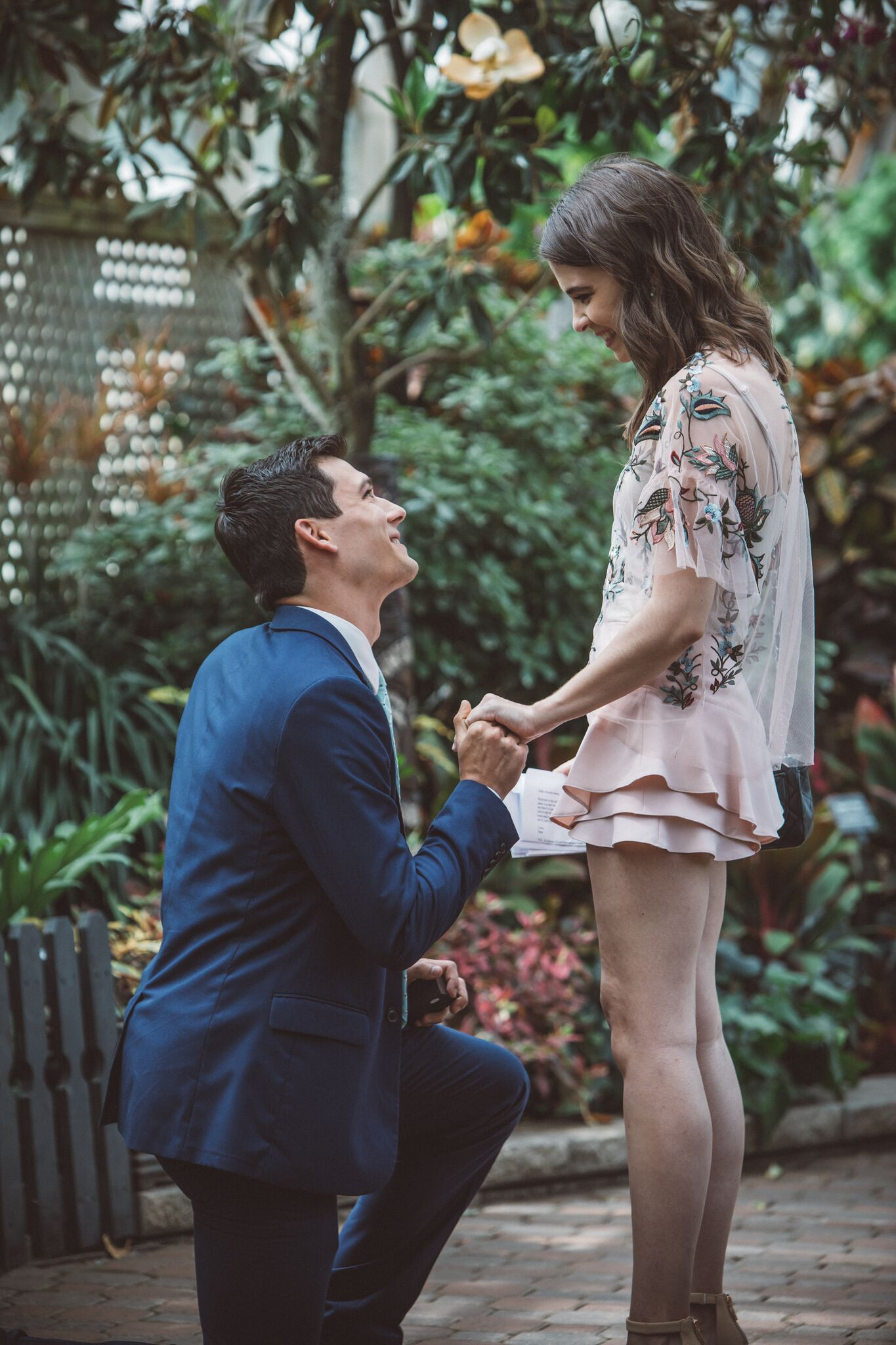 Amanda's Proposal in The Lincoln Park Conservatory