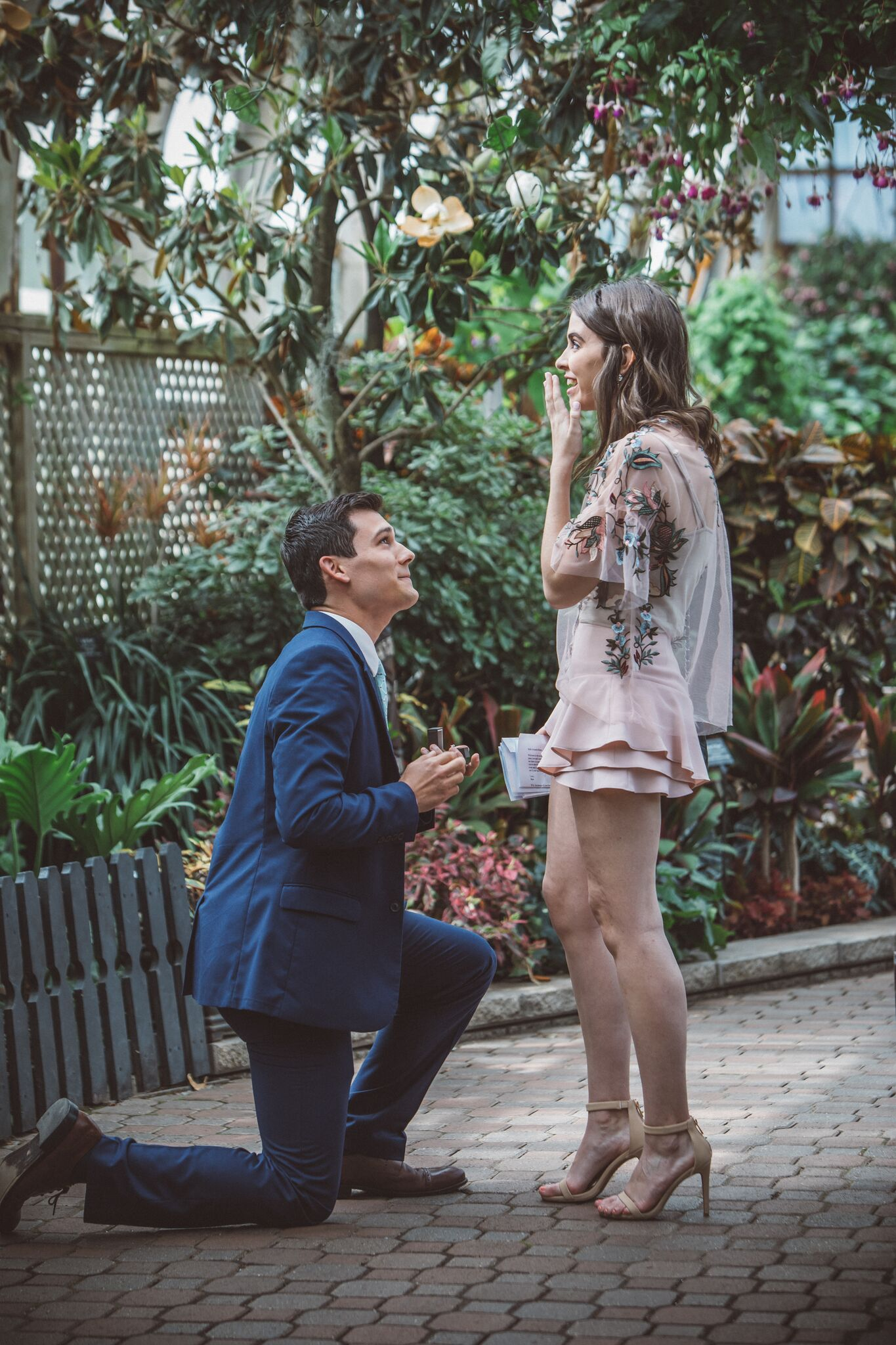 Amanda and Kollin's Engagement in The Lincoln Park Conservatory