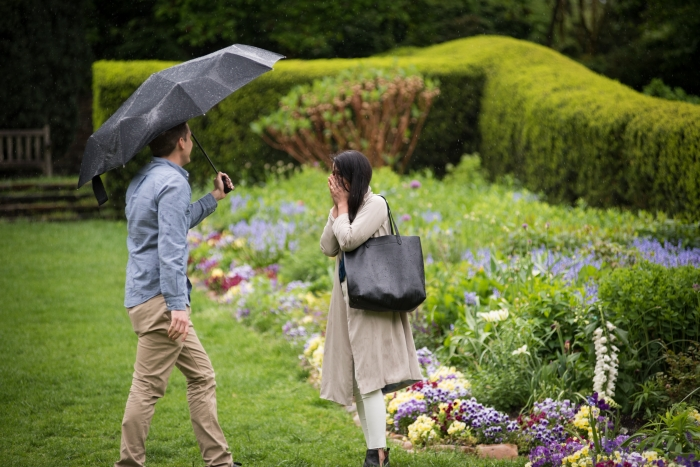 Engagement Proposal Ideas in Dumbarton Oaks Wedding