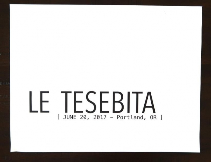 Proposal Ideas Le Tesebita Art Gallery in Portland, OR
