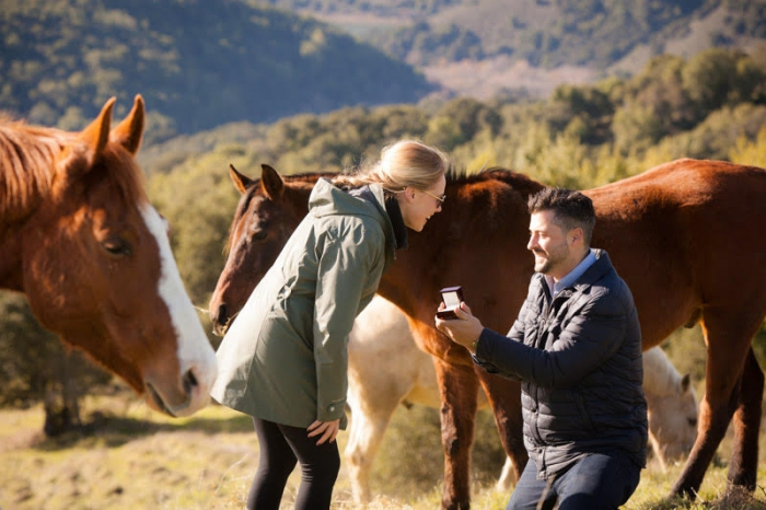 Kate and Doug's Engagement in In our horse pasture in San Francisco Bay Area