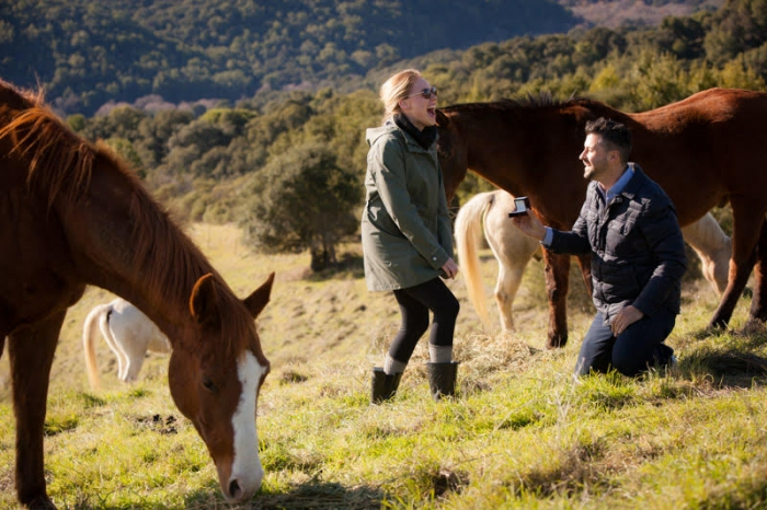 Proposal Ideas In our horse pasture in San Francisco Bay Area