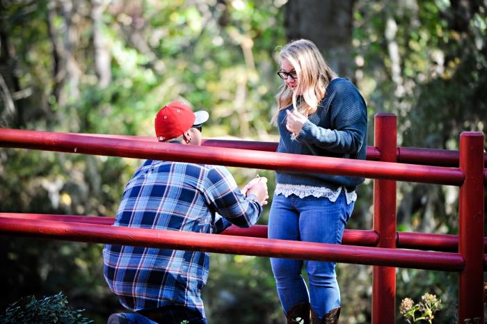 Briana's Proposal in Magnolia Plantation South Carolina