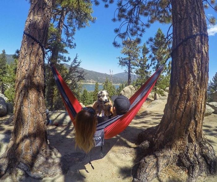 Wedding Proposal Ideas in Zion National Park -Angels landing