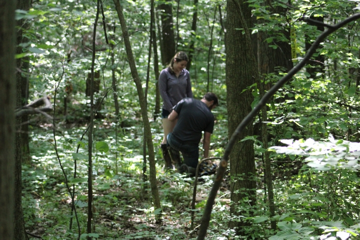 Proposal Ideas In the woods behind his house in Delphos, Ohio.