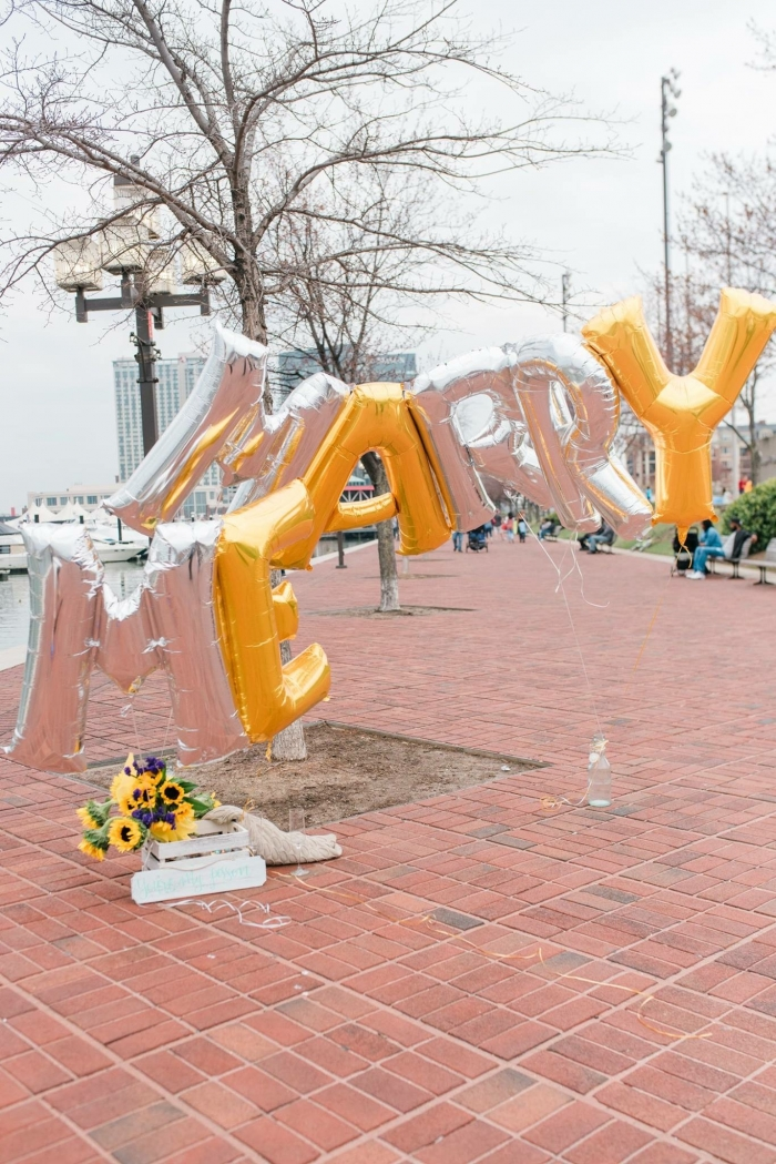 Wedding Proposal Ideas in Baltimore, Maryland