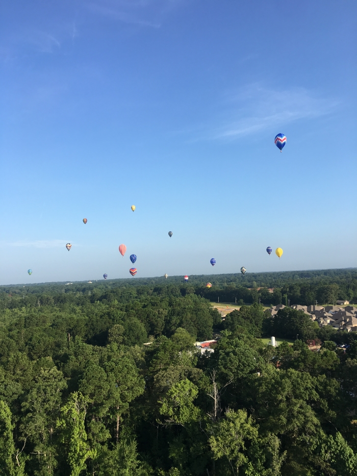 Engagement Proposal Ideas in On a hot air balloon ride