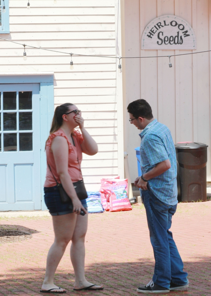 Engagement Proposal Ideas in Heirloom Market, Old Wethersfield, CT