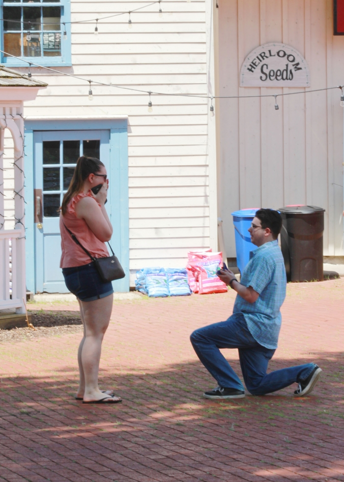 Marriage Proposal Ideas in Heirloom Market, Old Wethersfield, CT