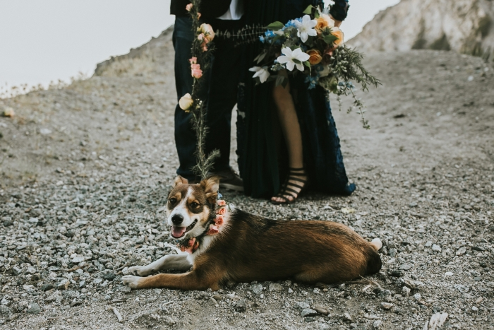 Engagement Proposal Ideas in Los Angeles Crest Mountains