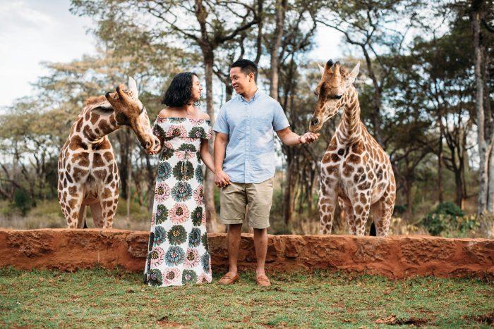 Where to Propose in Giraffe Manor in Kenya