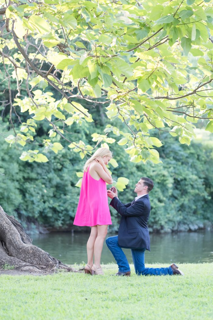 Marriage Proposal Ideas in Highland Park, Dallas, TX