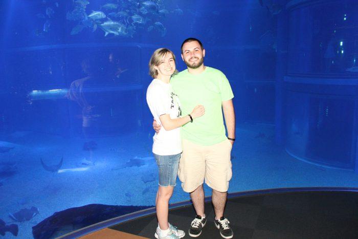 Proposal Ideas Osaka Aquarium Kaiyukan