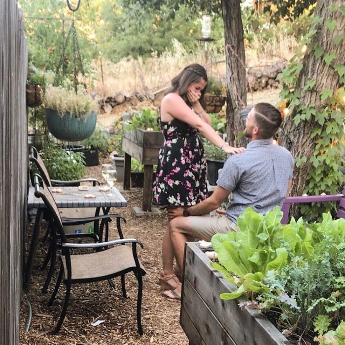 Karli's Proposal in In our garden