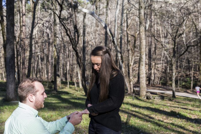 Wedding Proposal Ideas in A park
