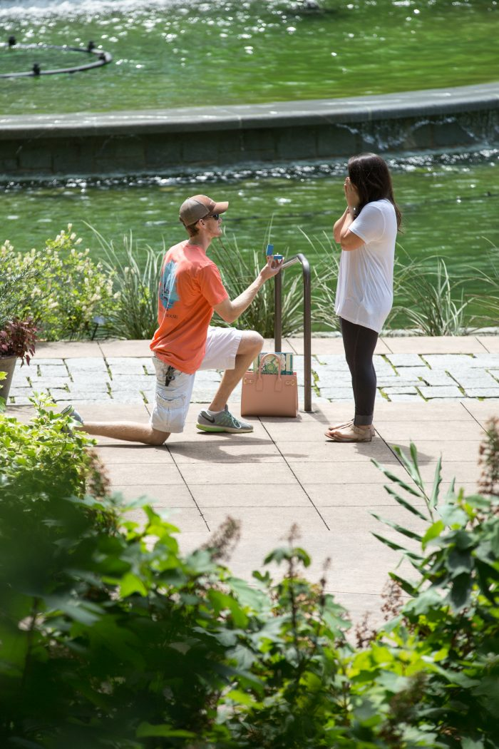 Engagement Proposal Ideas in Atlanta Botanical Gardens