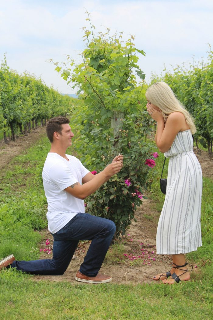 Wedding Proposal Ideas in Niagara on the lake, Peller Estate Winery