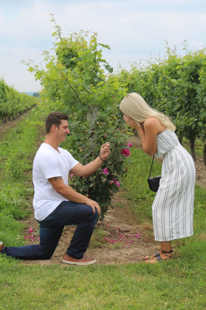 Proposal Ideas Niagara on the lake, Peller Estate Winery