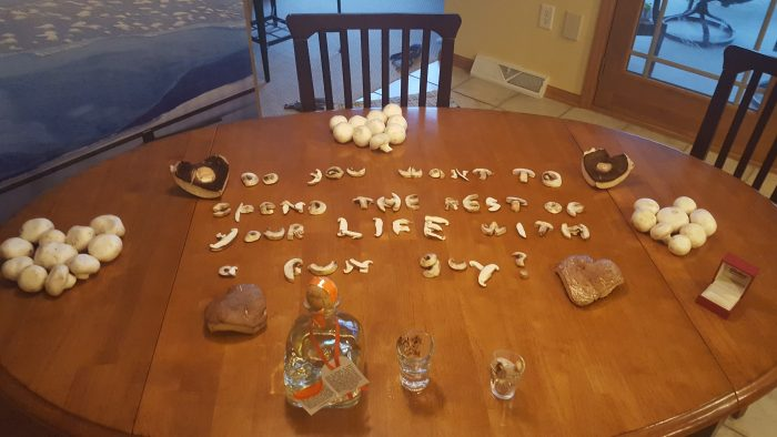 Wedding Proposal Ideas in Our House in Wisconsin