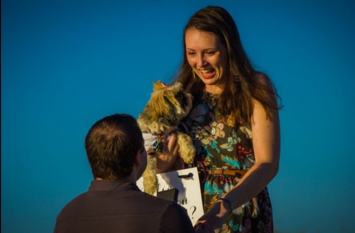 Wedding Proposal Ideas in Sunset Beach, Cape May